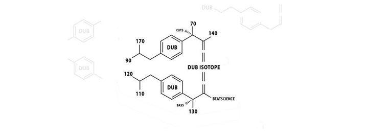 Dub Isotope w/ Orson & Shins-k